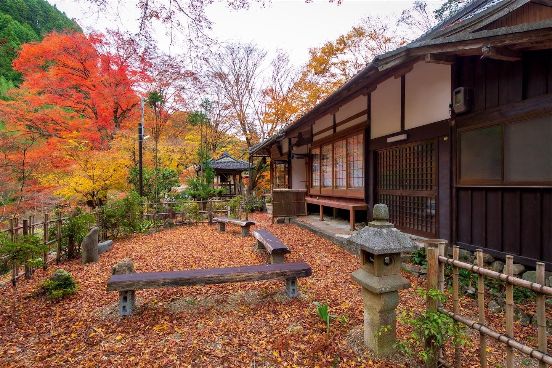 f:id:Shotetsuan:20200302181158j:image