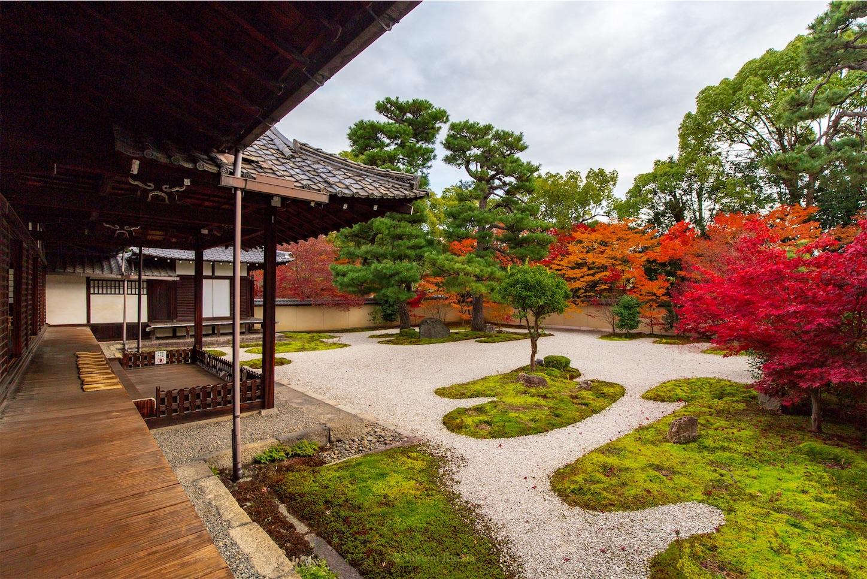 f:id:Shotetsuan:20200302181527j:image