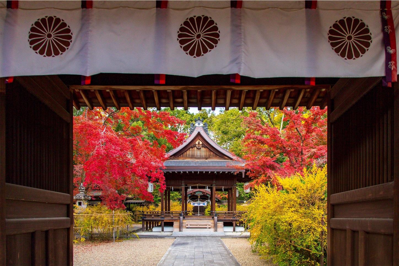f:id:Shotetsuan:20200302181548j:image