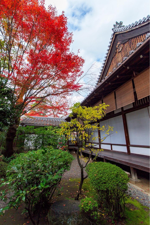 f:id:Shotetsuan:20200302181847j:image