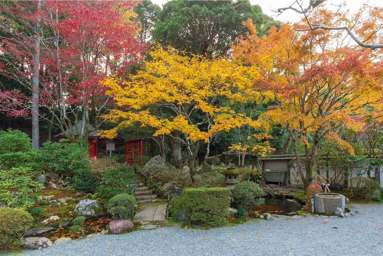 f:id:Shotetsuan:20200302181920j:image
