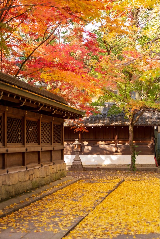 f:id:Shotetsuan:20200302182001j:image