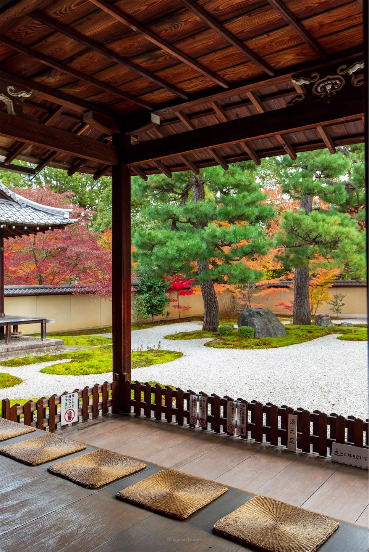 f:id:Shotetsuan:20200302182535j:image