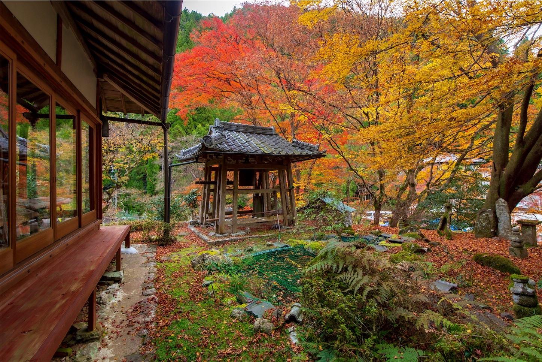 f:id:Shotetsuan:20200302183055j:image