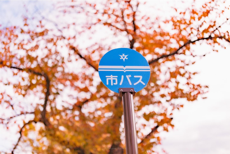f:id:Shotetsuan:20200302183258j:image