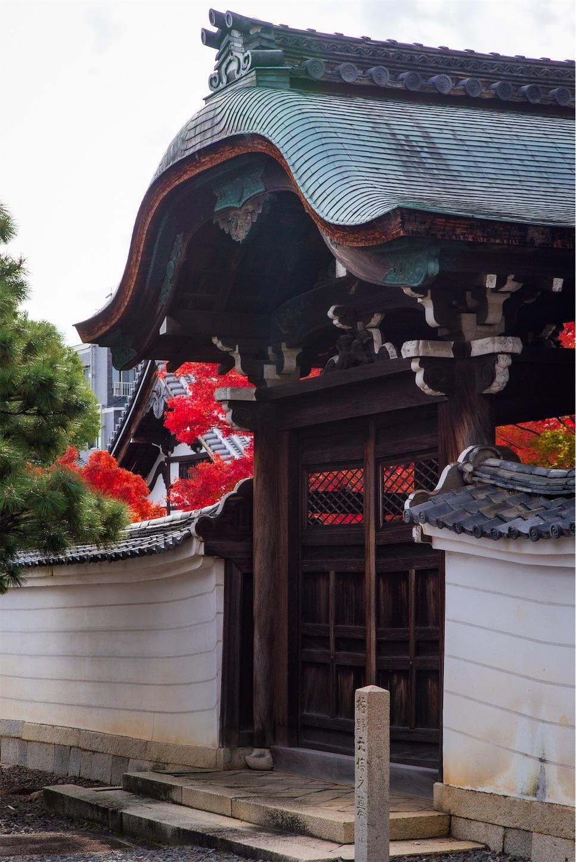 f:id:Shotetsuan:20200302183439j:image