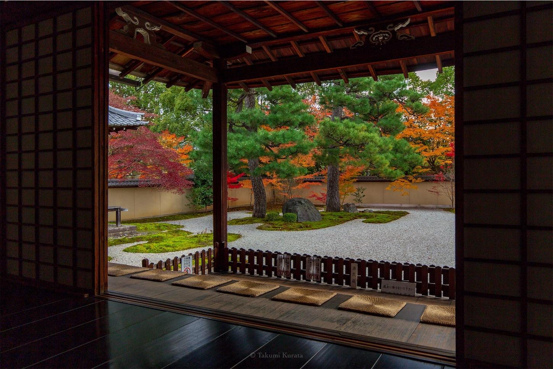 f:id:Shotetsuan:20200302183730j:image