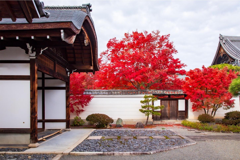f:id:Shotetsuan:20200302183818j:image