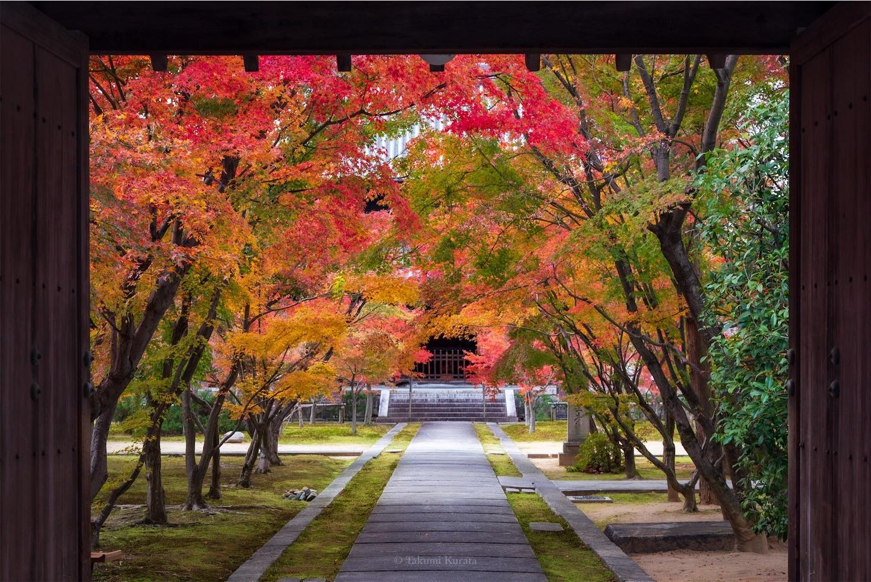 f:id:Shotetsuan:20200302183935j:image