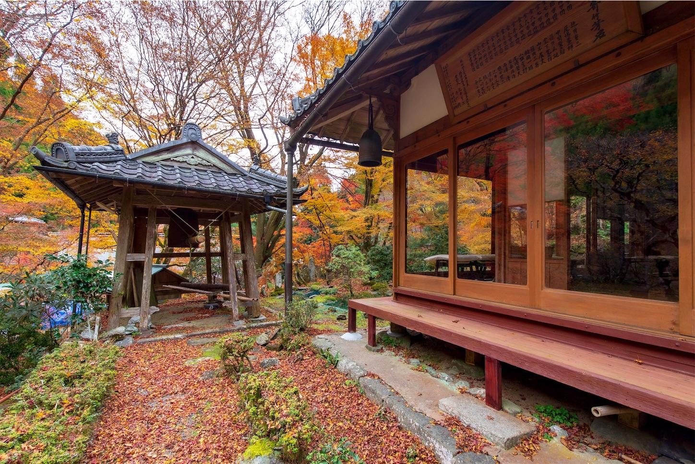 f:id:Shotetsuan:20200302184005j:image