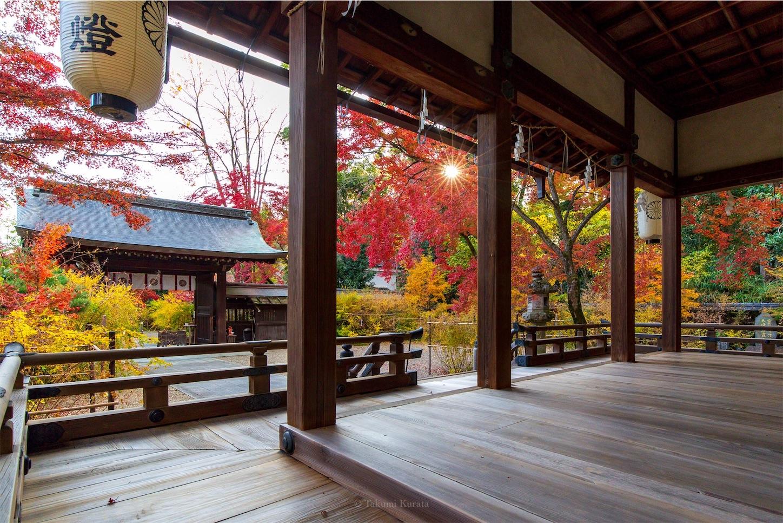 f:id:Shotetsuan:20200302184018j:image