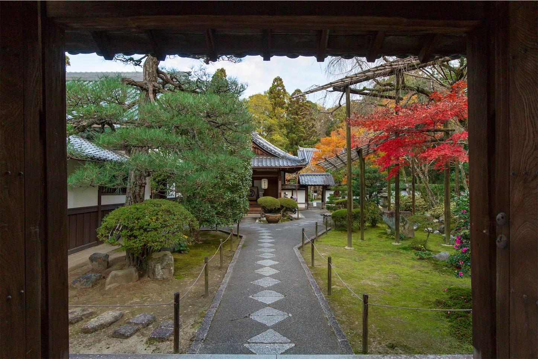 f:id:Shotetsuan:20200302184130j:image