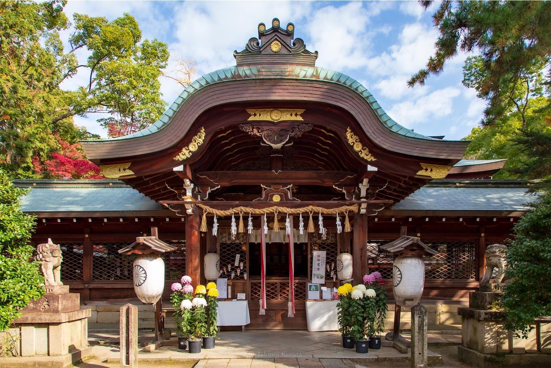 f:id:Shotetsuan:20200302184619j:image