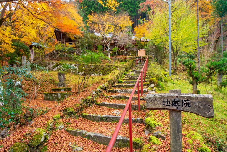 f:id:Shotetsuan:20200302184647j:image