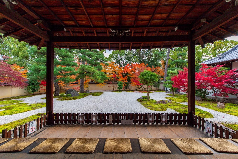 f:id:Shotetsuan:20200302184809j:image