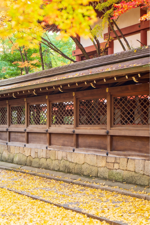 f:id:Shotetsuan:20200302185104j:image