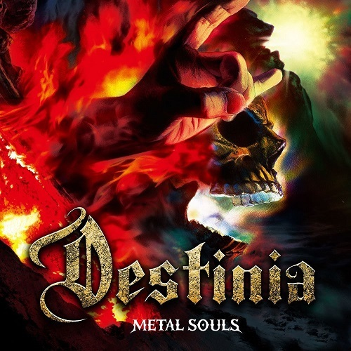 Nozomu Wakais DESTINIA 『METAL SOULS』
