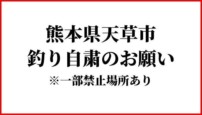 f:id:ShuN1:20200502221509j:plain