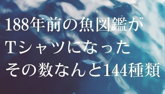 f:id:ShuN1:20210911110338j:plain