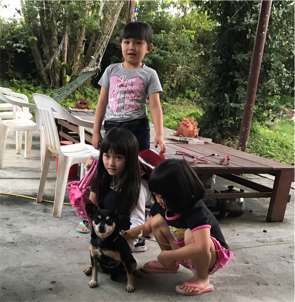 f:id:Shun_SHIDO:20170119195044j:image
