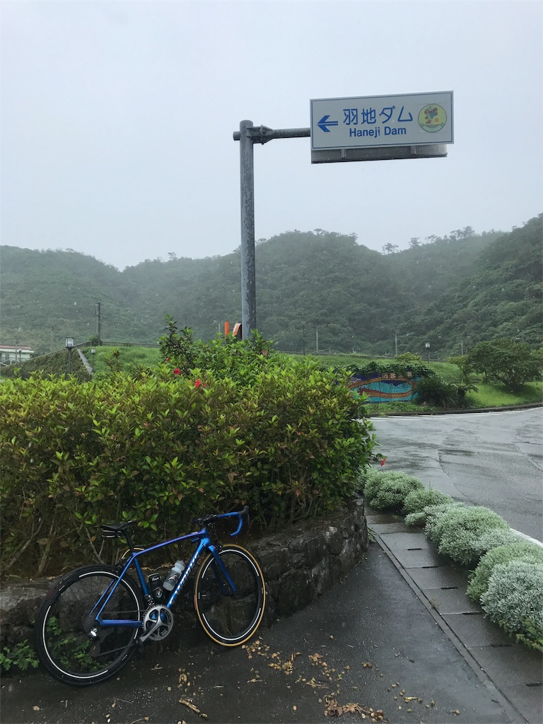 f:id:Shun_SHIDO:20170617005247j:image