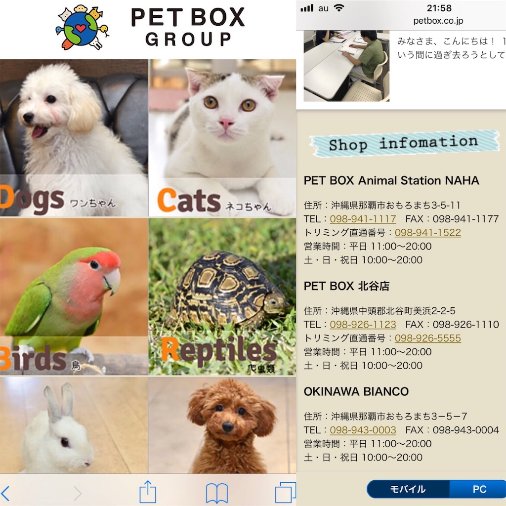 f:id:Shun_SHIDO:20181025220430j:image