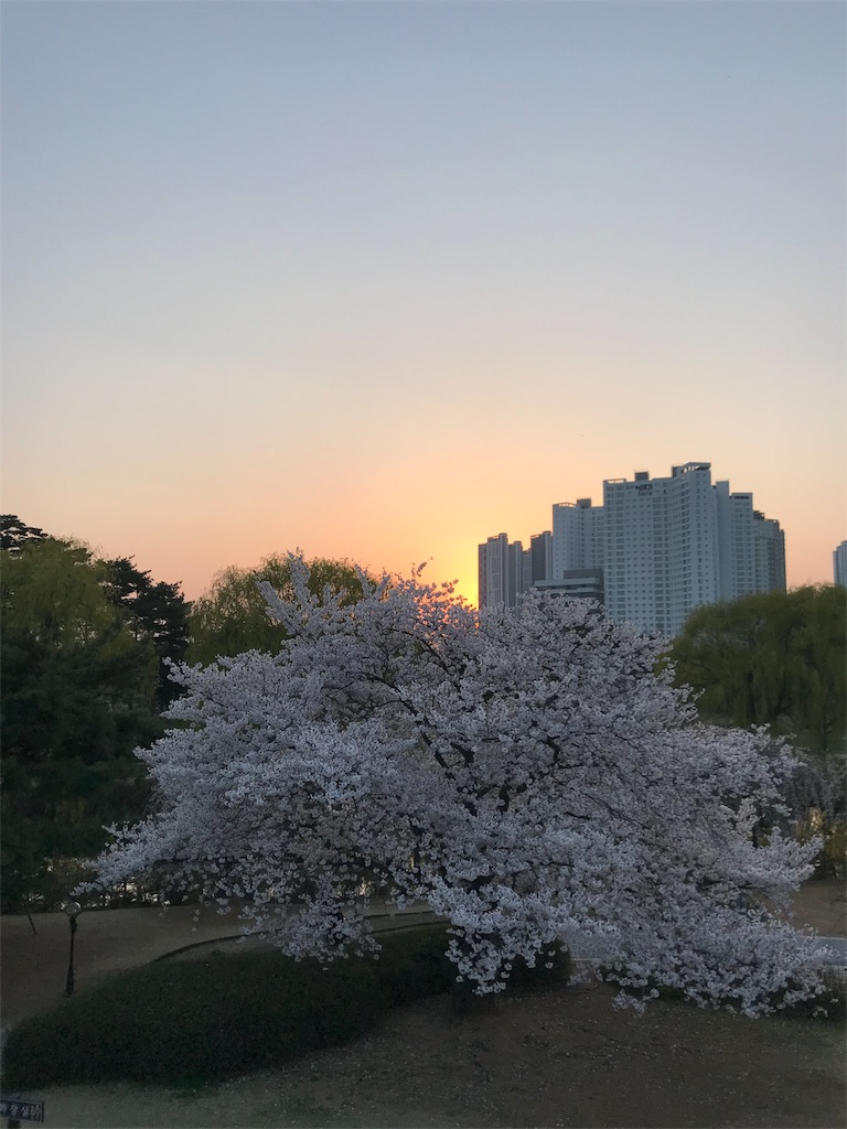 f:id:Shun_SHIDO:20190416135832j:image