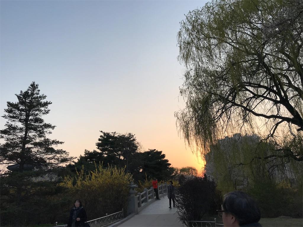 f:id:Shun_SHIDO:20190416135858j:image