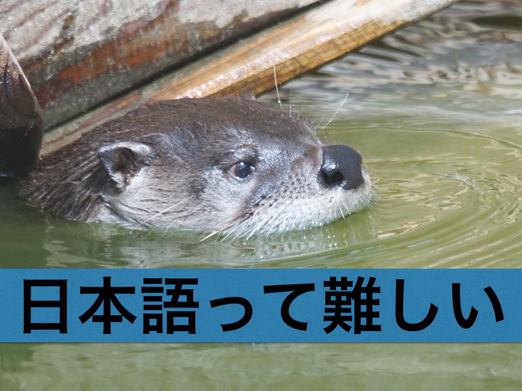 f:id:Shun_Yuki:20160617073111j:plain