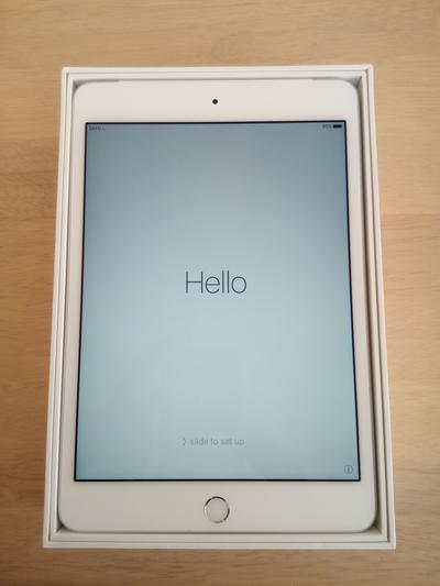 iPad mini 4 設定