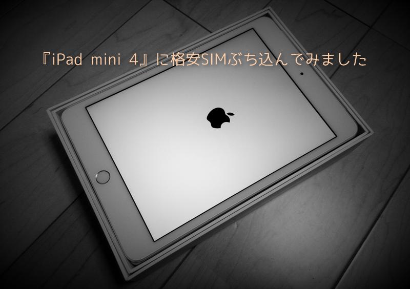 iPad mini 4 sim