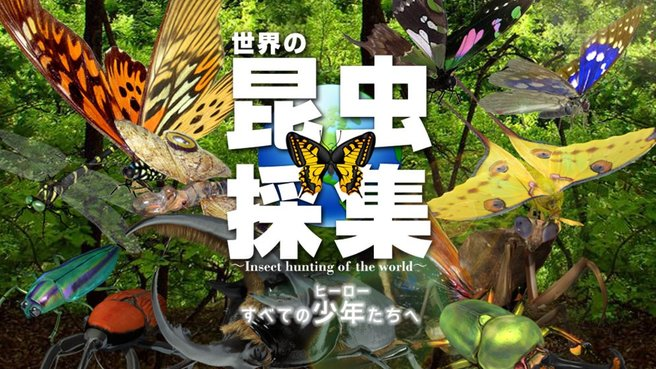 夏休みをやりなおしたい全ての人に捧ぐ!『世界の昆虫採集』アプリで思う存分に森を冒険しようぜ