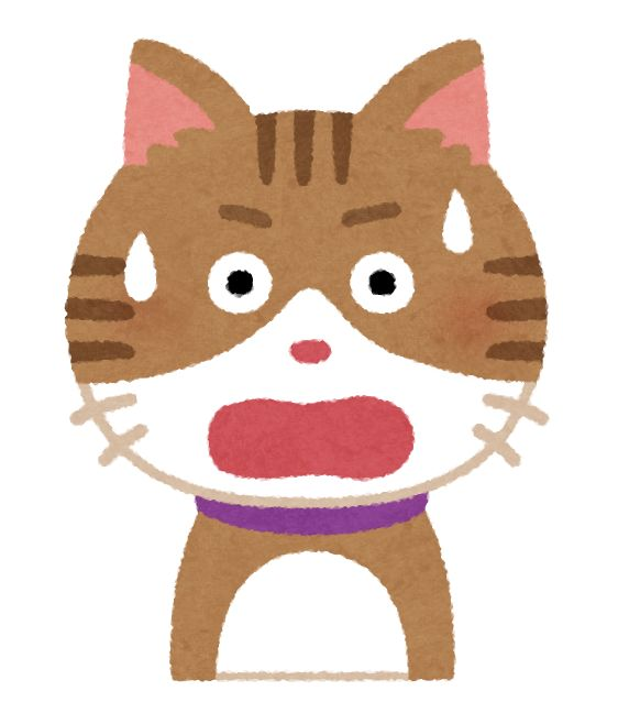 困った顔の猫