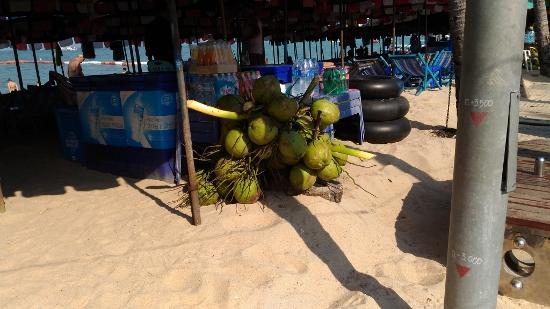 タイのココナッツ画像