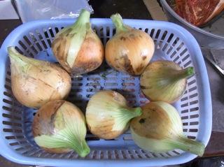f:id:Small_Vegetable:20110523195620j:image