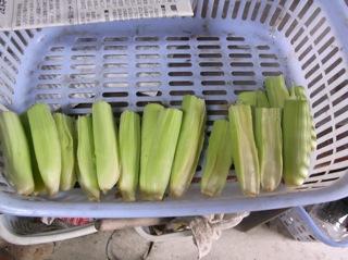 f:id:Small_Vegetable:20110523195626j:image