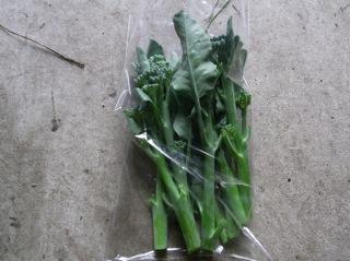 f:id:Small_Vegetable:20110620192408j:image