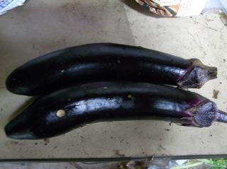 f:id:Small_Vegetable:20110620192409j:image