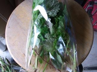 f:id:Small_Vegetable:20110620192414j:image