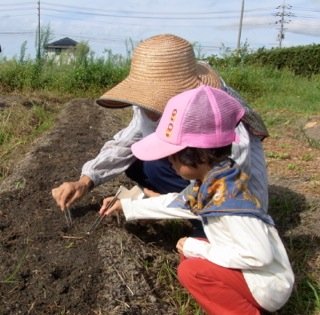 f:id:Small_Vegetable:20110911212603j:image