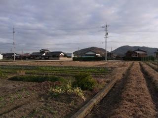 f:id:Small_Vegetable:20120121211414j:image