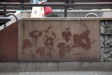 2009-10-09 13:44:29 通町筋電停 夏(肥後あさがお)