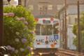 [熊本市電][電車][路面電車]1351 2014-05-31 17:38:35