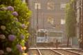 [熊本市電][電車][路面電車]1351 2014-05-31 17:38:48