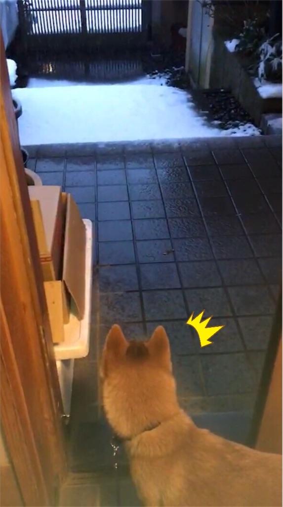 f:id:Snowkey:20180122193747j:image