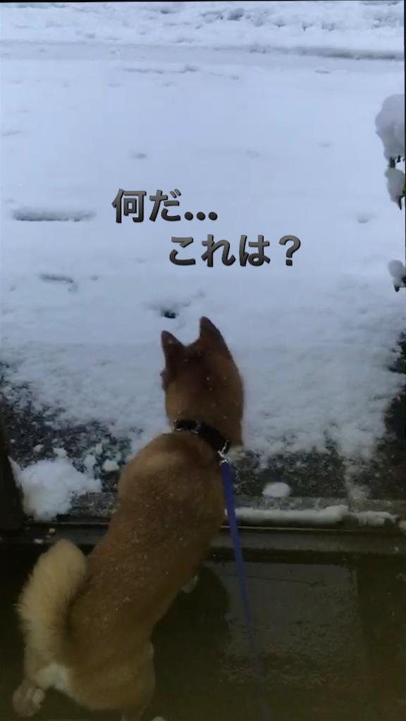 f:id:Snowkey:20180122194318p:image