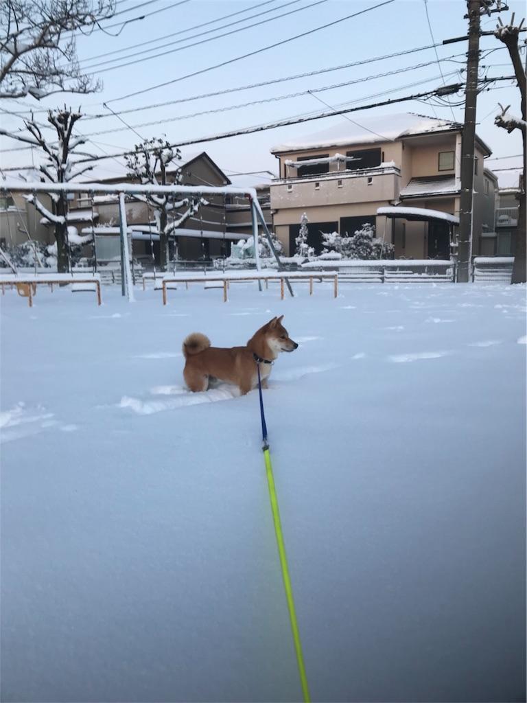 f:id:Snowkey:20180123073214j:image