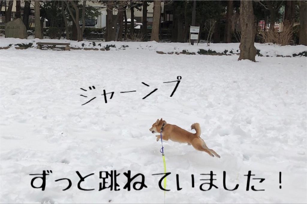 f:id:Snowkey:20180128110158j:image