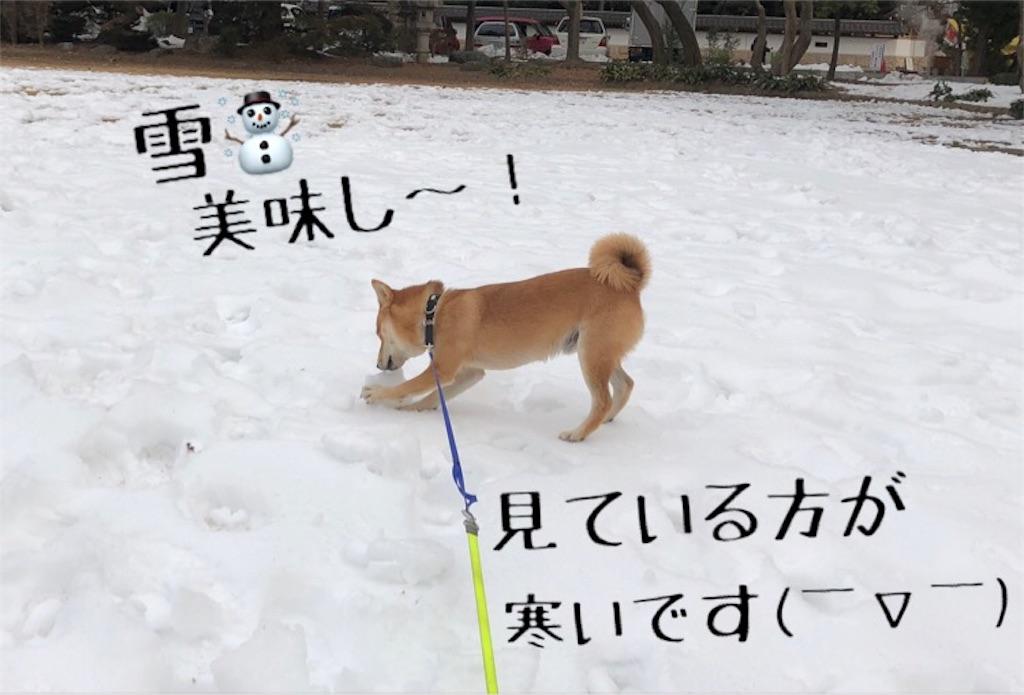 f:id:Snowkey:20180128110530j:image