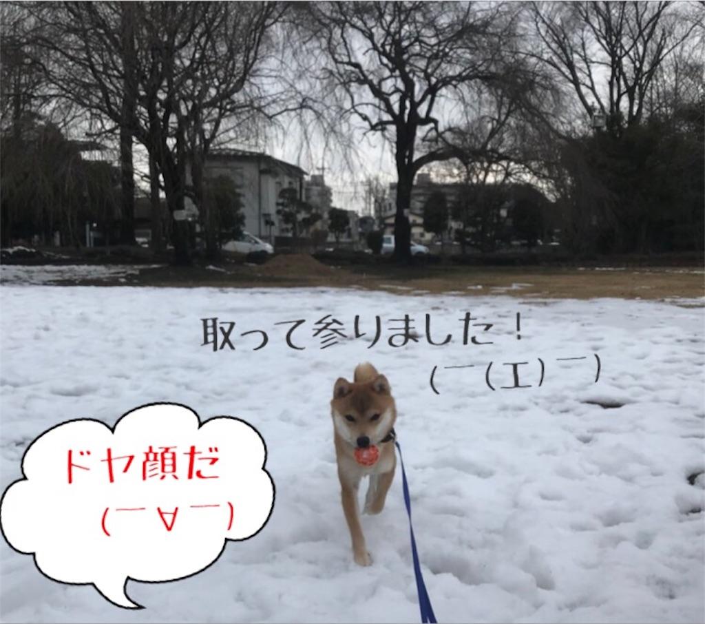 f:id:Snowkey:20180203131315j:image